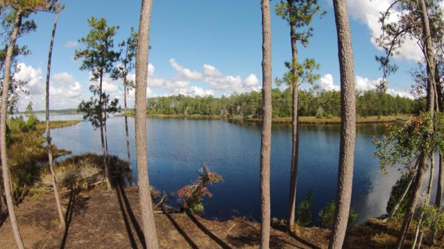 341 Timber Point Drive, Merritt, NC 28556 (MLS #100066656) :: Century 21 Sweyer & Associates