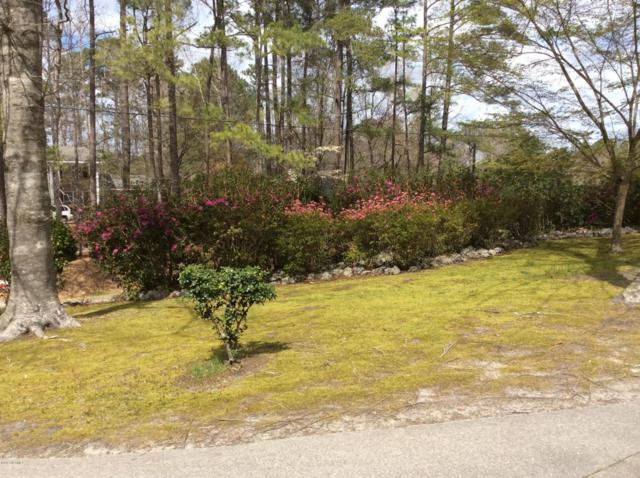 117 White Heron Lane, Swansboro, NC 28584 (MLS #100067087) :: Terri Alphin Smith & Co.