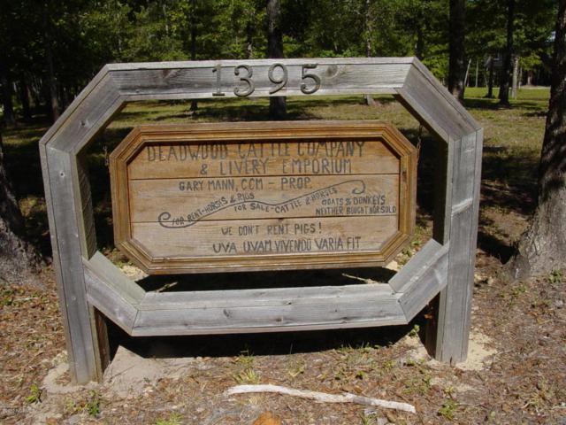 1395 Deadwood Trail SE, Winnabow, NC 28479 (MLS #100071539) :: Century 21 Sweyer & Associates