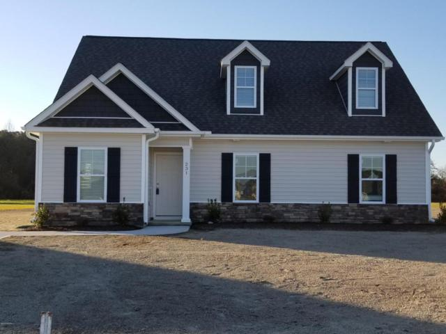 231 Asheberne Drive, Washington, NC 27889 (MLS #100075794) :: RE/MAX Essential