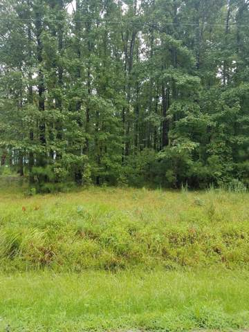 Lot 6 Timber Lane, Belhaven, NC 27810 (MLS #100080655) :: The Tingen Team- Berkshire Hathaway HomeServices Prime Properties