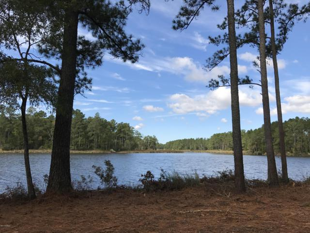 Lot 89 Bailey Pointe Drive, Belhaven, NC 27810 (MLS #100086631) :: RE/MAX Essential