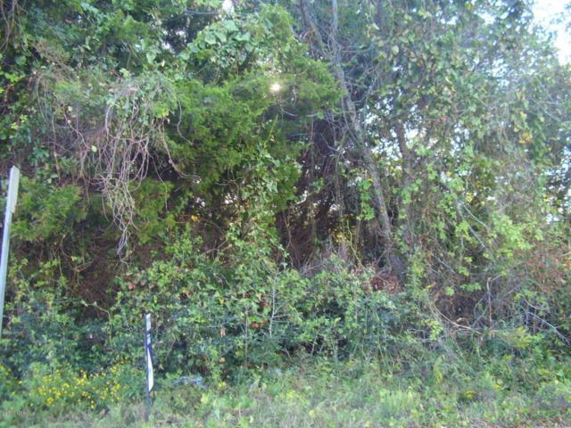 1613 Bowfin Lane, Carolina Beach, NC 28428 (MLS #100087640) :: Century 21 Sweyer & Associates