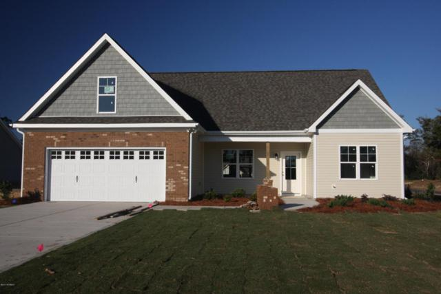 24 Amos Court, Rocky Point, NC 28457 (MLS #100087968) :: RE/MAX Essential