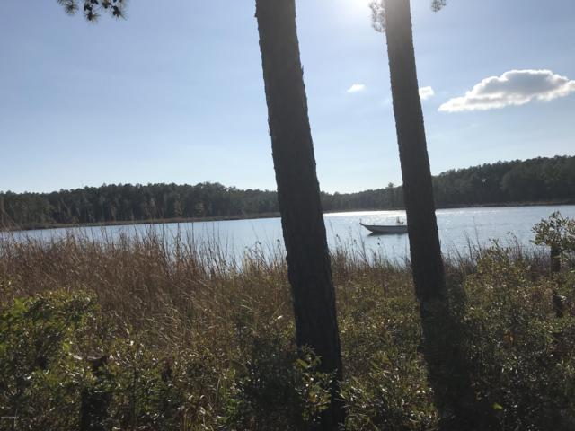 44 & 44a Windy Pointe, Belhaven, NC 27810 (MLS #100092302) :: RE/MAX Essential