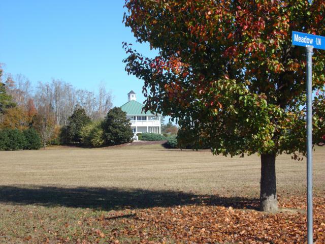 21 Meadow Lane, Arapahoe, NC 28510 (MLS #100092886) :: The Keith Beatty Team