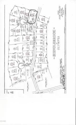 267 Shingle Brook Road, New Bern, NC 28560 (MLS #100094080) :: Coldwell Banker Sea Coast Advantage