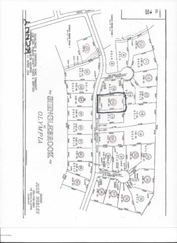 141 Shingle Brook Road, New Bern, NC 28560 (MLS #100094207) :: Coldwell Banker Sea Coast Advantage