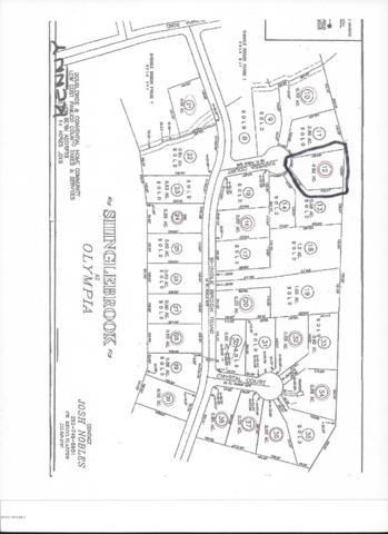 48 Karissa Court, New Bern, NC 28560 (MLS #100094208) :: Coldwell Banker Sea Coast Advantage