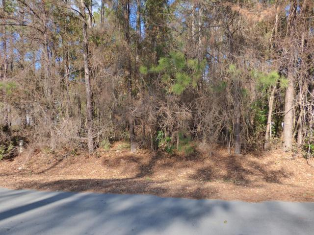 107 Silver Creek Landing Road, Swansboro, NC 28584 (MLS #100098429) :: Courtney Carter Homes