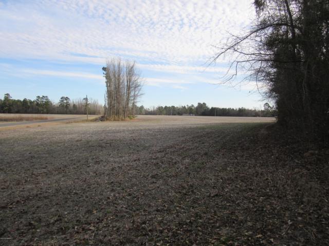 0 Porterville School Road, Clarkton, NC 28433 (MLS #100098928) :: Donna & Team New Bern