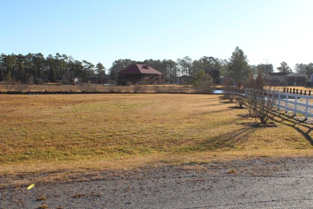 76 Dallas Paul Road, Belhaven, NC 27810 (MLS #100099397) :: Castro Real Estate Team