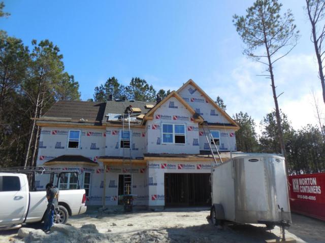 358 W Goldeneye Lane, Sneads Ferry, NC 28460 (MLS #100101192) :: RE/MAX Essential