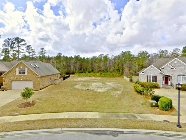 1007 Dowling Court, Leland, NC 28451 (MLS #100101496) :: The Keith Beatty Team