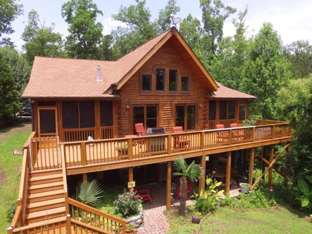 115 Bluff Road, Chocowinity, NC 27817 (MLS #100103196) :: The Keith Beatty Team