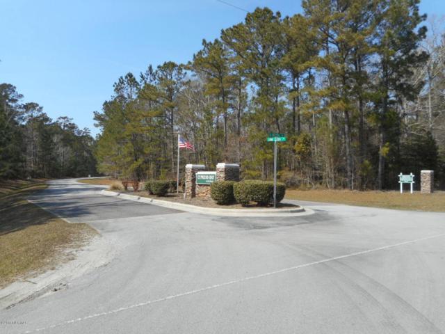 203 Long Creek Drive, Havelock, NC 28532 (MLS #100105206) :: Century 21 Sweyer & Associates