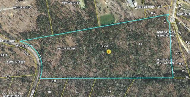 Lot 99 Long Point Road, Chocowinity, NC 27817 (MLS #100105801) :: The Keith Beatty Team