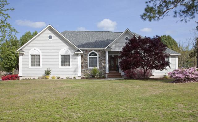 3401 Red Berry Drive, Wilmington, NC 28409 (MLS #100106808) :: Harrison Dorn Realty