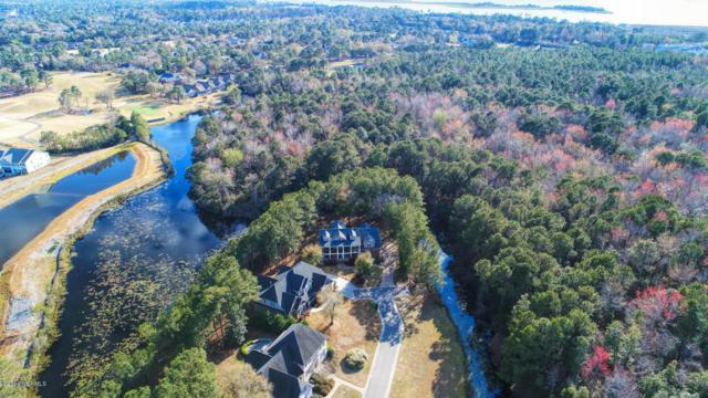 202 Ashworth Manor Court, Wilmington, NC 28412 (MLS #100107282) :: Coldwell Banker Sea Coast Advantage