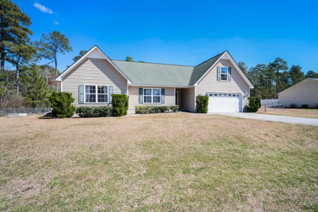 101 Countryside Court, Newport, NC 28570 (MLS #100107330) :: RE/MAX Essential