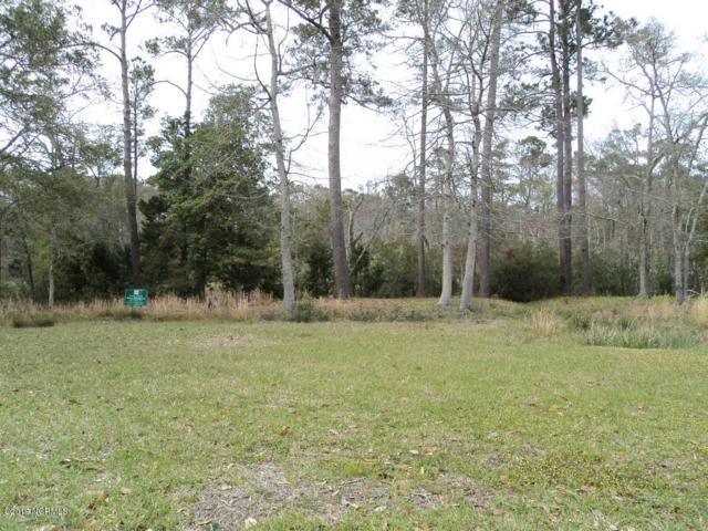 746 Skipjack Circle, Southport, NC 28461 (MLS #100107520) :: The Cheek Team