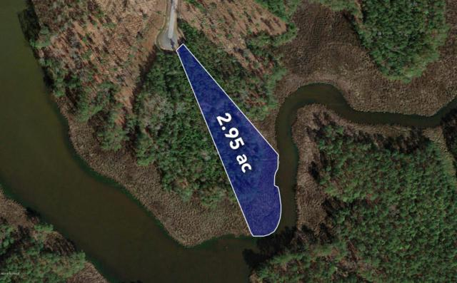 Lot 9 Bradford Court, Belhaven, NC 27810 (MLS #100107793) :: RE/MAX Essential