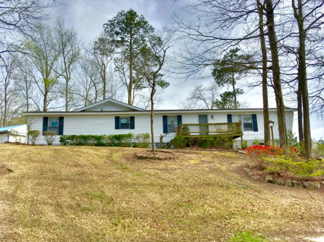 1121 River Road, Blounts Creek, NC 27814 (MLS #100108483) :: Chesson Real Estate Group