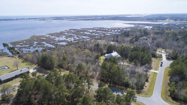 110 Oyster Catcher Way, Sneads Ferry, NC 28460 (MLS #100108615) :: The Oceanaire Realty
