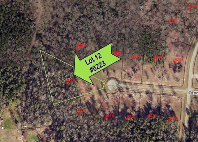 6223 Barney Road, Elm City, NC 27822 (MLS #100108689) :: The Cheek Team