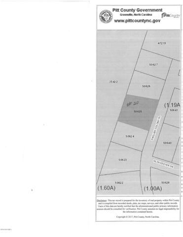 1203 English Colony Place, Washington, NC 27889 (MLS #100108986) :: RE/MAX Essential