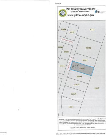 1655 English Colony Place, Washington, NC 27889 (MLS #100109022) :: RE/MAX Essential