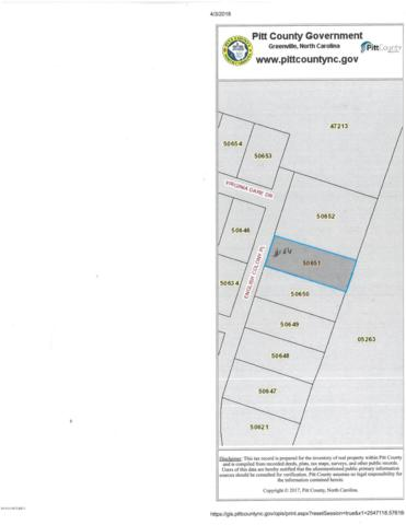 1645 English Colony Place, Washington, NC 27889 (MLS #100109023) :: RE/MAX Essential