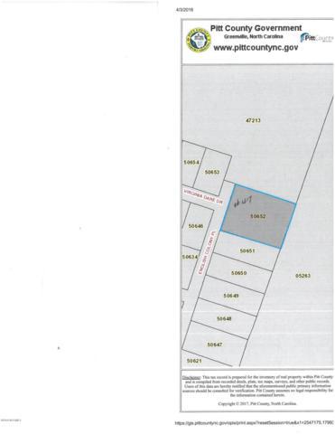 1635 English Colony Place, Washington, NC 27889 (MLS #100109024) :: RE/MAX Essential