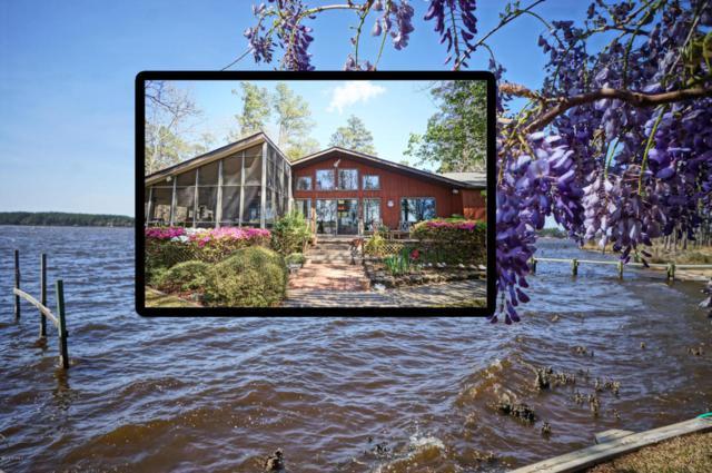 5546 Creek Pointe, New Bern, NC 28560 (MLS #100109710) :: Harrison Dorn Realty