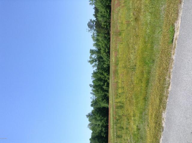 17 Huntcliff Drive, La Grange, NC 28551 (MLS #100114027) :: Vance Young and Associates