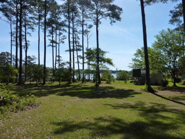 235 Stewart Drive, Beaufort, NC 28516 (MLS #100114379) :: RE/MAX Essential