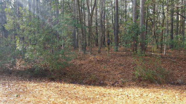 134 Tupelo Lane, Washington, NC 27889 (MLS #100115261) :: Harrison Dorn Realty
