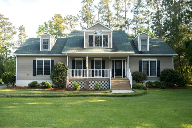 153 Cummins Creek Road, Beaufort, NC 28516 (MLS #100116386) :: Berkshire Hathaway HomeServices Prime Properties