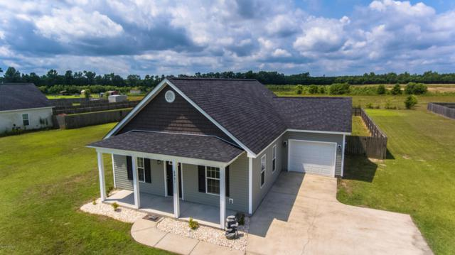 2401 White Oak River Road, Maysville, NC 28555 (MLS #100116531) :: RE/MAX Essential