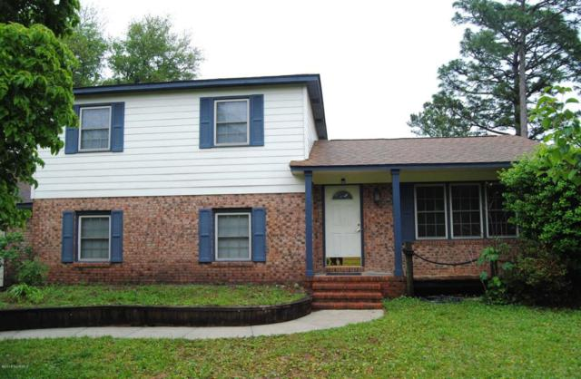 4821 Red Heart Drive, Wilmington, NC 28412 (MLS #100116759) :: Courtney Carter Homes