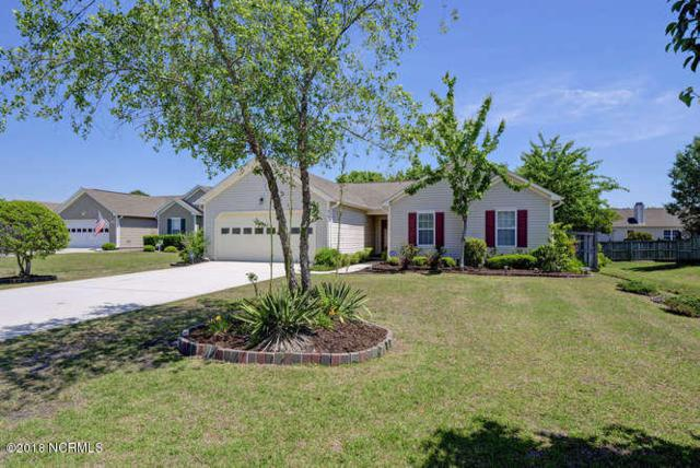 414 Point View Court, Wilmington, NC 28411 (MLS #100116979) :: The Oceanaire Realty