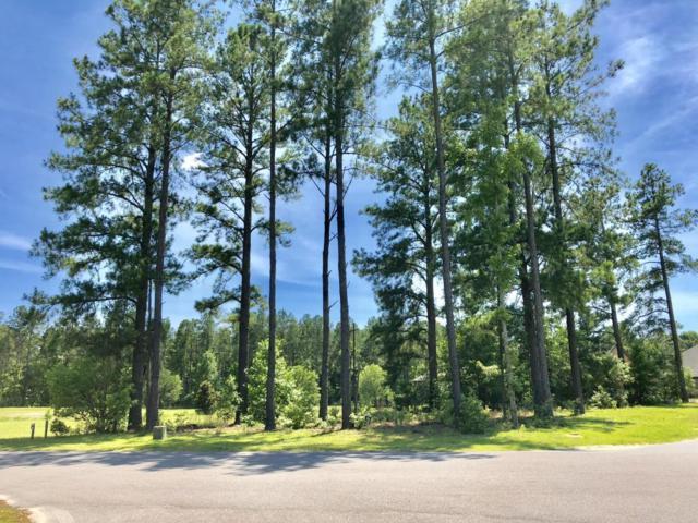 300 Cornubia Drive, Castle Hayne, NC 28429 (MLS #100118943) :: Century 21 Sweyer & Associates