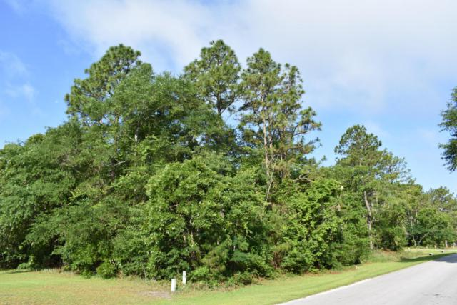 Lot 14 Phillips Drive, Minnesott Beach, NC 28510 (MLS #100119046) :: The Oceanaire Realty