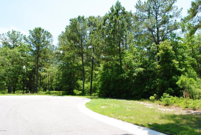 3739 Little Berry Place NE, Leland, NC 28451 (MLS #100119111) :: The Keith Beatty Team