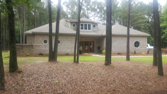 2673 Hwy 123 S, Snow Hill, NC 28580 (MLS #100119175) :: Courtney Carter Homes