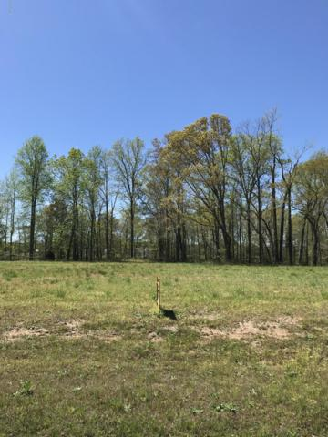 Lot 38 Bridgewater South Drive, Bath, NC 27808 (MLS #100121165) :: Donna & Team New Bern