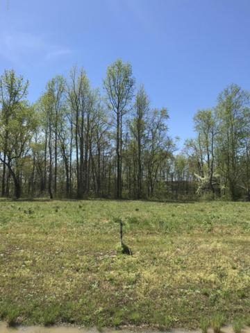 Lot 40 Bridgewater South Drive, Bath, NC 27808 (MLS #100121191) :: The Keith Beatty Team