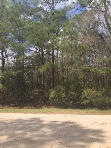 1099 Bear Trap Drive NE, Leland, NC 28451 (MLS #100122931) :: Courtney Carter Homes