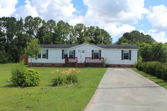 204 Michelle Lane, Maysville, NC 28555 (MLS #100123828) :: Courtney Carter Homes