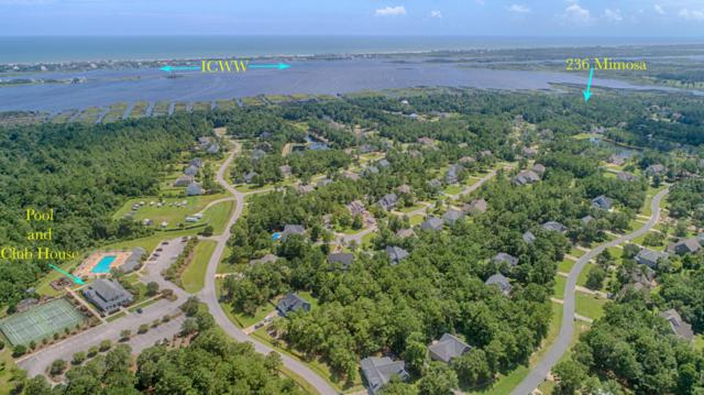 236 Mimosa Drive, Sneads Ferry, NC 28460 (MLS #100127577) :: Coldwell Banker Sea Coast Advantage